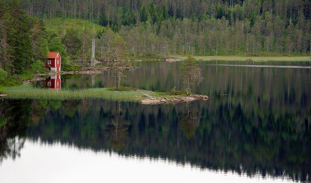 steinar-engeland-113894